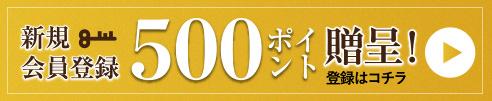 新規会員登録で500ポイント贈呈
